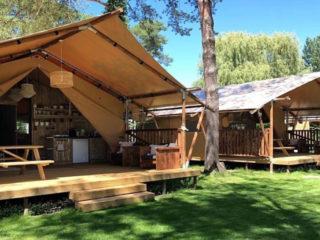 YALA_Safari_Tent_Woody_overview_tents_landscape