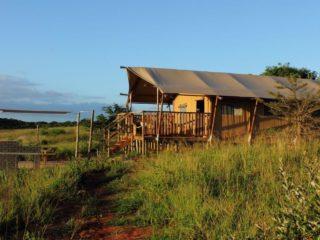 YALA_Sunshine_sunset_Hluhluwe_Bush_Camp_Africa - Safari tents and glamping lodges