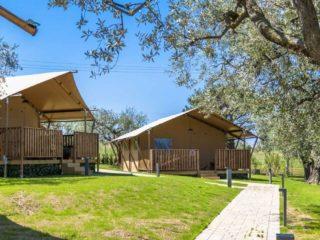 YALA_Sunshine_at_the_campsite_with_trees - Safarizelte & Glamping Lodges