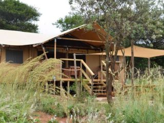 YALA_Dreamer_with_terras_Hluhluwe_Bush_Camp_Africa - サファリテント & グランピングロッジ